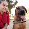 Paloma: Dog sitter à marseille