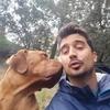 Pau: Passejos i guarderia canina