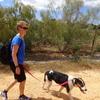 Mika: Zuverlässige Hundebetreuung von erfahrener Hundesitterin