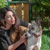 Sara: Alojamiento para perros en Campolivar