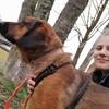 Linda: Suche Hunde zum Gassi gehen und betüddeln in Haunstetten/Königsbrunn