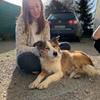 Laura: Dog-sitter sur Nantes 🐶🌼
