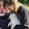 Emma: Happy dogs