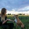 Ingrid: Hundebetreuung in 71701