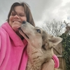 Amanda: Dog Walker & Sitter in Hull
