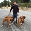 Santiago F.: Paseador, cuidador y educador de perros con experiencia. Dispongo de casa en Ávila y Segovia