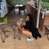 Ariadna: Dogs first, always!
