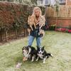 Lizzie: Dog Walker/Sitter in Leeds