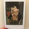 Ariel: Dog sitter in Walsall