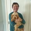 Michael: Dog sitter in Drogheda