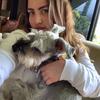 Nicole: Dog sitter in München