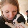 Julie: Dog Sitter sur Clermont-Ferrand