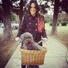 Sofía: Cuidadora con patio en Alicante Adoro lxs perris y llevo tiempo cuidando de ellxs.