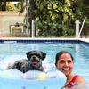 Andrea: Liebevolle und zuverlässige Hundesitterin in München