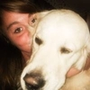 Gwenaelle: Dog sitting avec amour à Lambersart