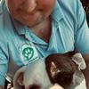 JAMES : Bromsgrove PET-HOUSE SITTER
