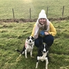 Rhonwen: Friendly dog walker and sitter in Surrey Quays