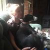 Catherine: Dog sitter in Bath