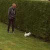 Marion: Dog sitter des petites, moyennes et grosses boules de poiles