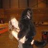 Carla: Cuidadora y peluquera canina Madrid Moratalaz