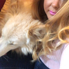 Corrina: Dog sitter in Bristol