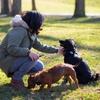 Aline : Hundesitter in München