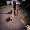 Raquel: Cuidador y educadora canina desde el respeto y hacia el bienestar del perro en Donosti
