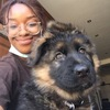 Yeanolia (yuh-know-Leah): Friendly Dog Sitter in Leeds
