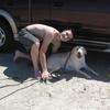Phillip: Zuverlässiger Hundeliebhaber in  Waldtrudering
