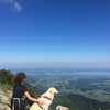 Franziska: Flexible Studentin mit viel Hundeerfahrung in Freising