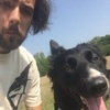Tomasz: Dog sitter in Liverpool