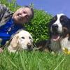 Camilo: Unos días para ti o que no puedes atender a tu perrillo sin Ansiedades, en una casa familiar en Cambre, con 33 años de Educador Canino....