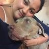Tiana: Dog sitter à Lyon pour tenir compagnie à vos toutous ❤️❤️