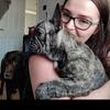 Jade: Dog sitter/boarding in East Belfast