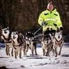 Michael: Hundesitter in Karlsruhe