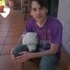Adrián: Paseo perros en Pontevedra