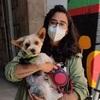 Maritza: Cuidadora de perritos ❤️