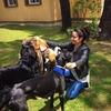 SANDRA : Paseo y adiestro a tu perro. (Sin alojamiento)
