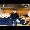 Alfie : Dog Walker / Sitter