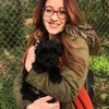 Martina: Dog sitter in London Borough of Hammersmith and Fulham