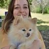 Chrissy: Australian Dog Sitter in Glasgow