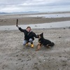 Juliette: Dog sitter in Warrington