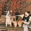 Stef: Hundesitter in HHM