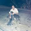 Enzzo : Dog sitter in Madrid