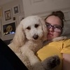Beth: Dog sitter in Whiteabbey, Newtownabbey, Glenformley or any other local areas