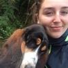 Rebecca: Waterford Walks
