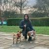 Vadilonga Pet care: Vadilonga's Pet Spa Care