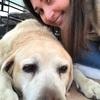 Mathilde: Dog sitter sur le canton de Fayence