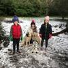Larry: Dog sitter in Cork