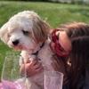 Jaz: Dog sitter in Brighton